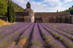 Abadía con un campo de la lavanda, Provence de Senanque Imagen de archivo libre de regalías