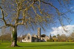 Abadía de Adare Imagen de archivo libre de regalías