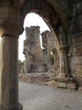 Abadía de Basingwerk Fotos de archivo libres de regalías