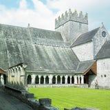 Abadía de Holycross Imágenes de archivo libres de regalías
