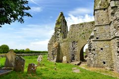 Abadía de Hore, monasterio cisterciense arruinado cerca de la roca de Cashel, Irlanda Imágenes de archivo libres de regalías