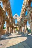 Abadía de Jedburgh Imagen de archivo libre de regalías