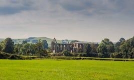 Abadía de los visitantes Foto de archivo libre de regalías