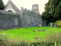 Abadía de Malahide Imagen de archivo