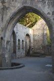 Abadía de Muckross cerca de Killarney, condado Kerry Fotos de archivo
