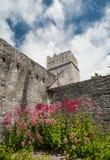 Abadía de Muckross en el anillo de kerry Imágenes de archivo libres de regalías