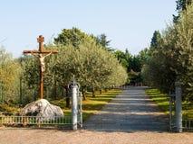 Abadía de Piona, avenida arbolada de aceitunas Foto de archivo libre de regalías