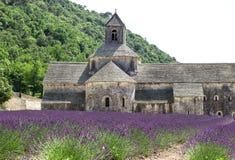 Abadía de Senanque con el campo de la lavanda, señal de Provence Imagen de archivo libre de regalías