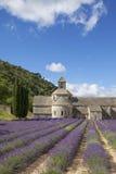 Abadía de Senanque en luz del verano Imagen de archivo libre de regalías