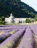 Abadía de Senanque, Provence Fotografía de archivo