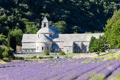 Abadía de Senanque, Provence Fotografía de archivo libre de regalías