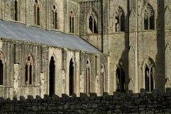 Abadía de Tintern Foto de archivo libre de regalías