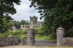 Abadía de Tintern - condado Wexford - Irlanda Imagen de archivo libre de regalías