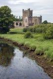 Abadía de Tintern - condado Wexford - Irlanda Fotografía de archivo