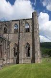 Abadía de Tintern en País de Gales Imagen de archivo libre de regalías