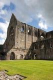 Abadía de Tintern en País de Gales Fotos de archivo