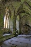 Abadía de Valle Crucis Imagen de archivo