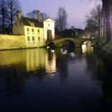 abadía del cisne de la noche Fotos de archivo