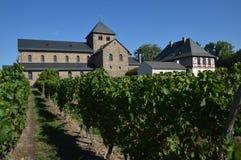 Abadía del viñedo Imágenes de archivo libres de regalías