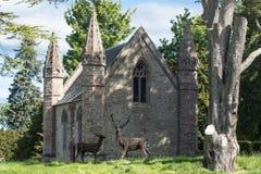 Abadía en la colina discutible en Escocia Imagen de archivo libre de regalías