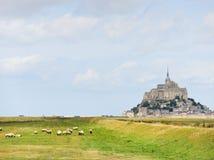 Abadía grazingnear de santo-Miguel del mont de las ovejas Imagen de archivo libre de regalías
