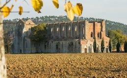 Abadía vieja de San Galgano Fotografía de archivo