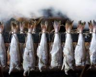 Abadejos fumados de los pescados Foto de archivo