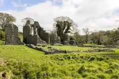 Abadia da polegada, Irlanda do Norte fotografia de stock royalty free