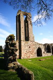 Abadia de Croxden Fotografia de Stock