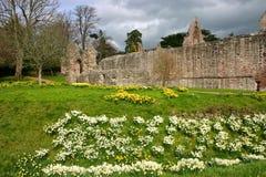 Abadia de Dryburgh fotos de stock royalty free
