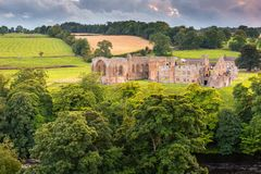 Abadia de Egglestone no riverbank de T do rio Foto de Stock Royalty Free