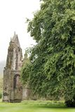 Abadia de Holyrood fotos de stock royalty free