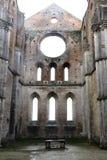 Abadia de San Galgano Foto de Stock Royalty Free