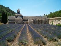 Abadia de Senanque Fotografia de Stock Royalty Free
