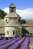 Abadia de Senanque Fotos de Stock Royalty Free