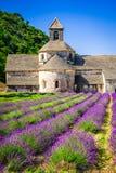Abadia de Senanque, alfazema de Provence, França imagens de stock
