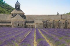 Abadia de Senanque e de flores da alfazema Fotos de Stock Royalty Free