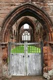 Abadia velha de Sweethart, Escócia Foto de Stock