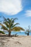 Abadoned fartyg i sandig strand i den Antsiranana fjärden Madagascar Royaltyfria Foton