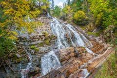 Abaissez Bertha Falls en parc national de lacs Waterton image libre de droits