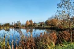 Abaissez Bruckland - Devon Images libres de droits