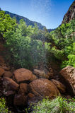Abaissez Emerald Pool Photo stock