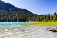Abaissez Joffre Lake, Joffre Lake Provincial Park, AVANT JÉSUS CHRIST, Canada Photographie stock