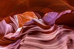 Abaissez la beauté de grès d'antilope Image stock
