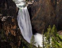 Abaissez la cascade à écriture ligne par ligne de Yellowstone Photos stock