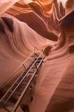 Abaissez la gorge d'antilope Photographie stock