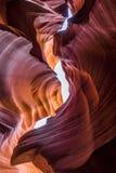 Abaissez la gorge d'antilope Photos stock