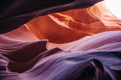 Abaissez la gorge d'antilope, page, Arizona Images stock