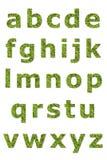 Abaissez la lettre du lichen vert Images stock