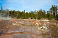 Abaissez le bassin de geyser Photo stock